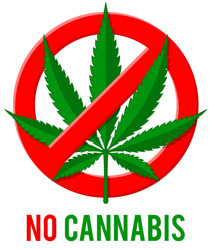 NO THC Drug Test Panels-min