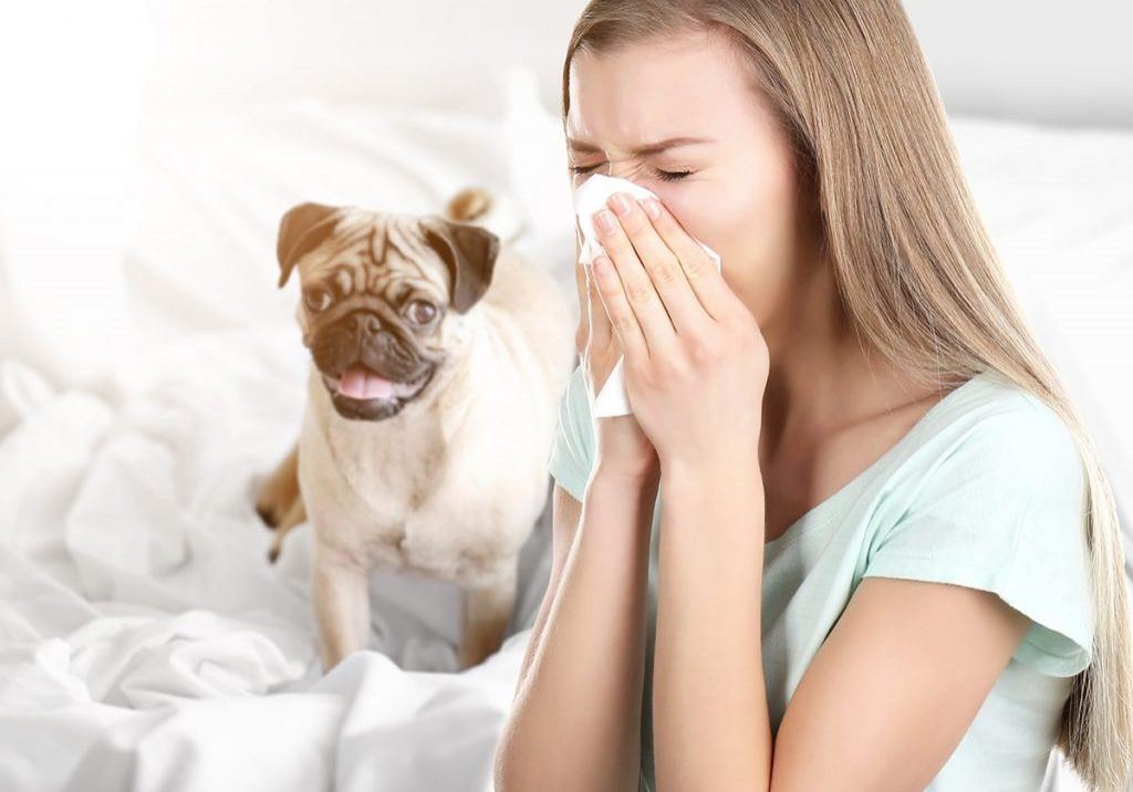 Allergy Girl and Dog-min