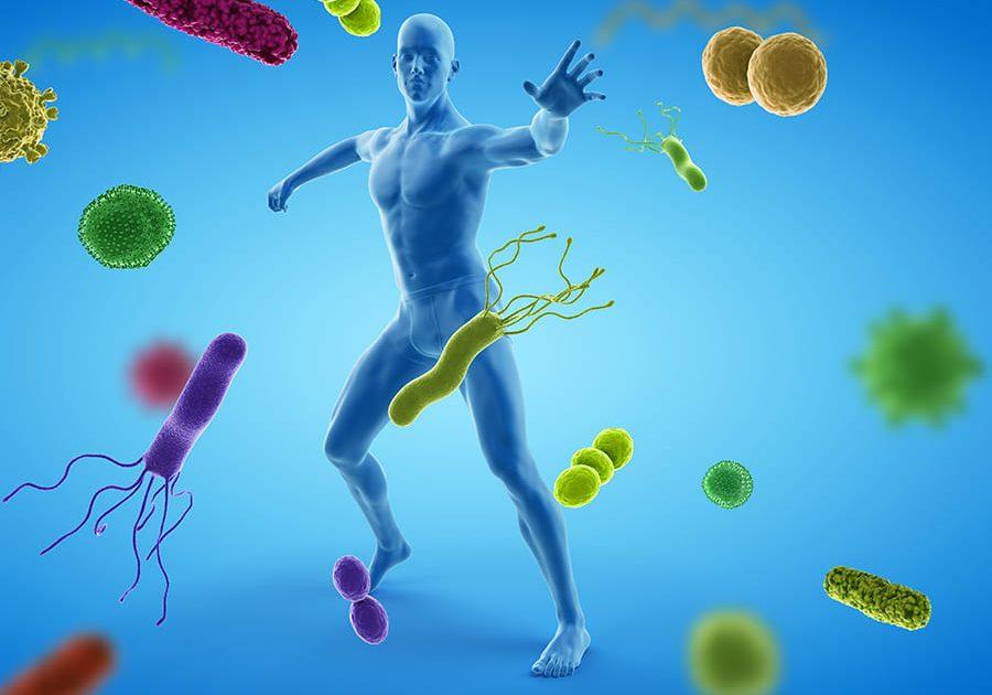 Immunity Graphic
