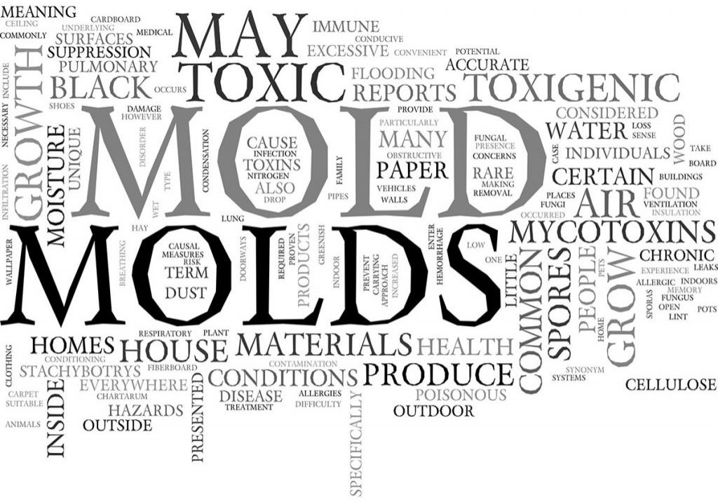 MycoToxins-Molds